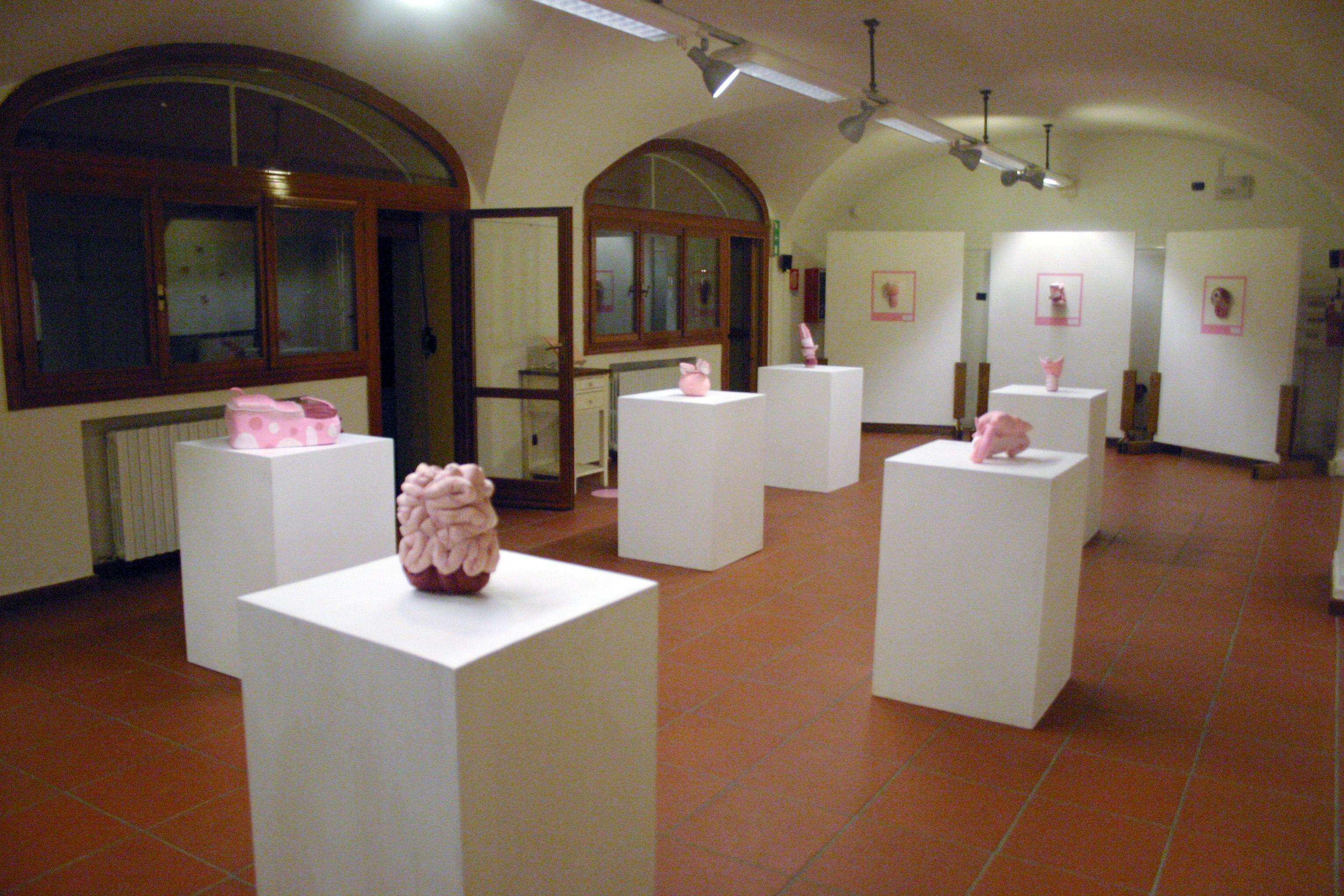 Rosa carne - pink flesh - Michela del Degan