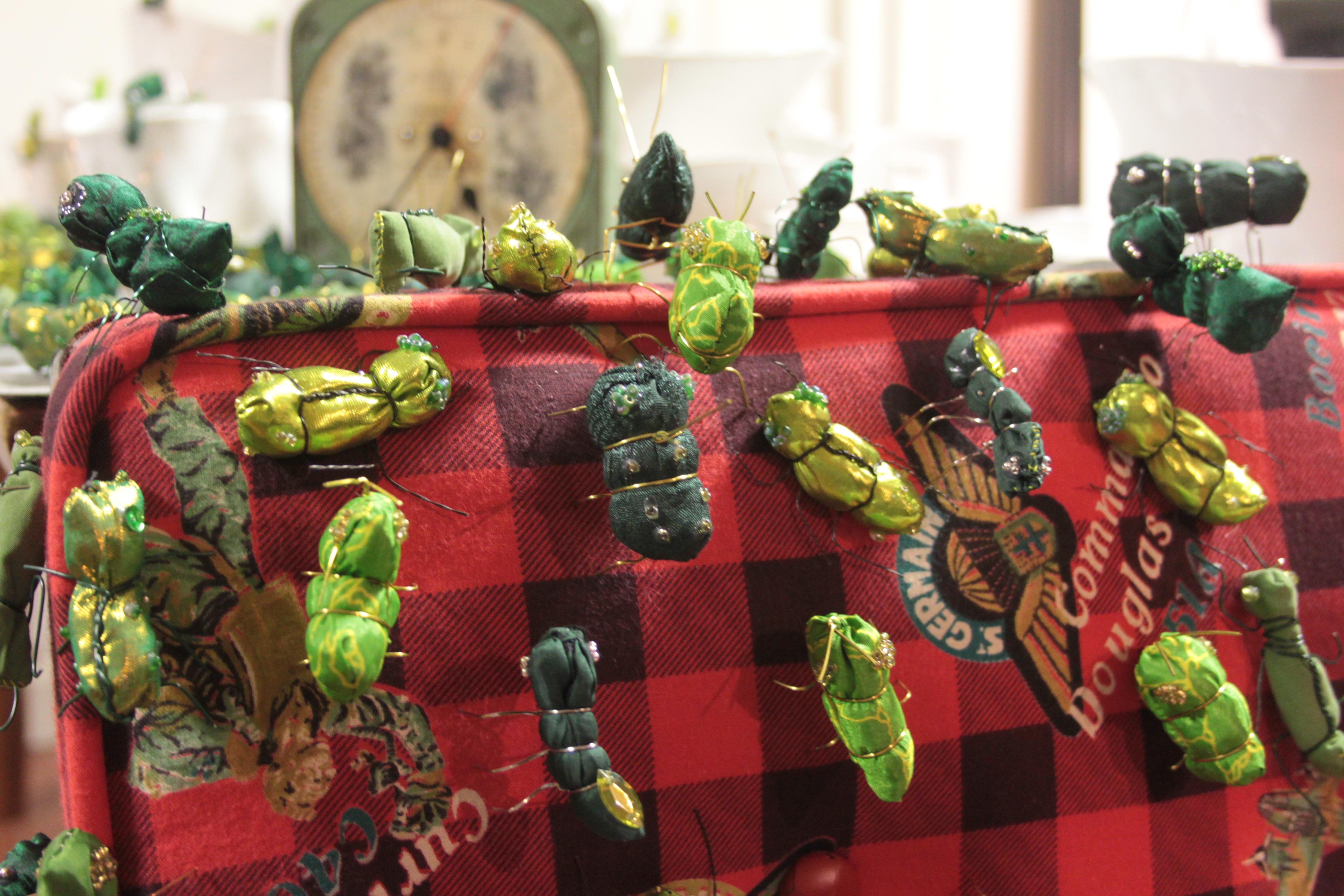 Mostra Artropodi insetti